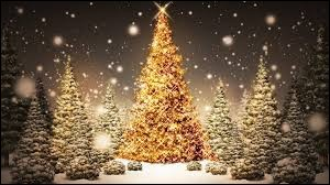 Bientôt, __ sera Noël.