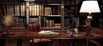 Lis-tu beaucoup les livres scolaires de sorcellerie ?