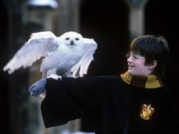 Quel personnage de Harry Potter es-tu ?