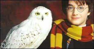 """Quel enchantement issu de la saga """"Harry Potter"""" permet de nettoyer un objet, comme la cage d'Hedwige ?"""