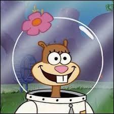 Quel animal Sandy est-elle ?