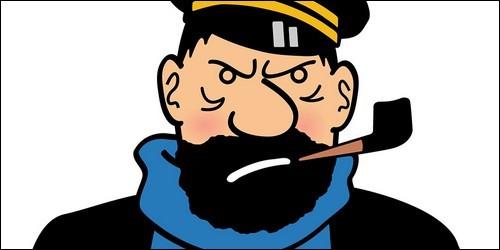 "Dans ""Tintin"", où vit le capitaine Haddock ?"