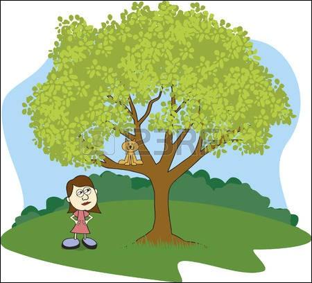 Une dame n'arrive pas à faire descendre son chat de l'arbre :